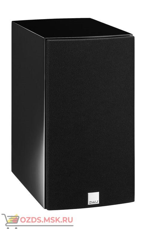 Полочная акустическая система ICON 2 Цвет: Черный глянцевый BLACK HIGH GLOSS