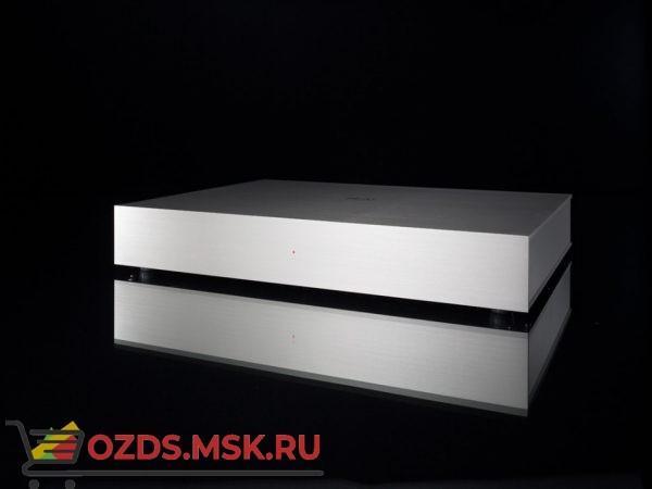 Усилитель мощности Densen Beat-310 PLUS [albino]