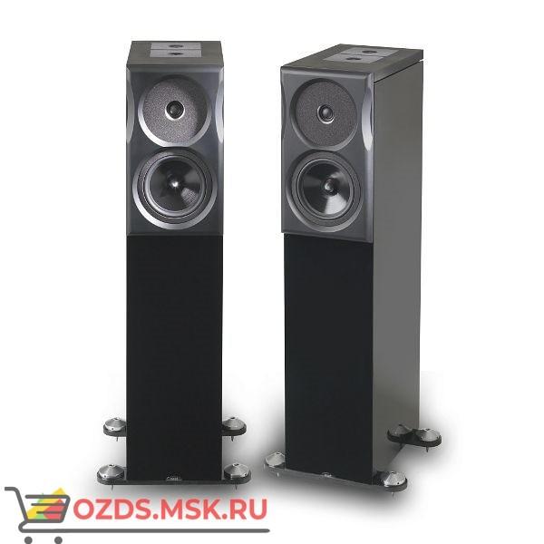 Напольные акустические системы Neat Ultimatum XL6. Цвет: Черный ясень