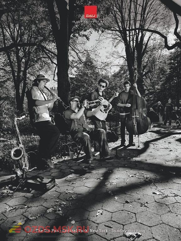 Акустическая панель DALI ACOUSTIC PANEL/The Tin Pan (Central Park) A1