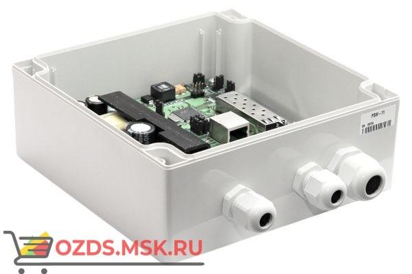 TFortis PSW-11: Медиаконвертер