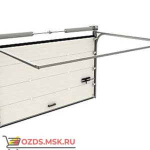 DoorHan RSD02 (4200х2420) с калиткой: Ворота секционные