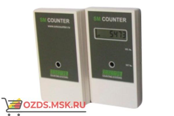 SM Counter Cчётчик числа посетителей