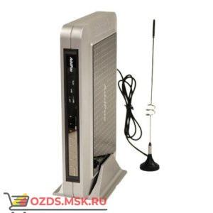 AP-GS1004A, 4 GSM: VoIP-GSM шлюз