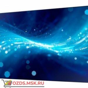 iVi 49PD2: Профессиональная панель