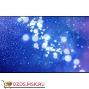 Samsung QH55H: Профессиональная панель