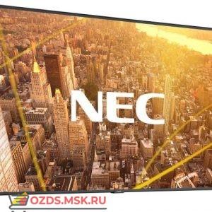 NEC C501: Профессиональная панель