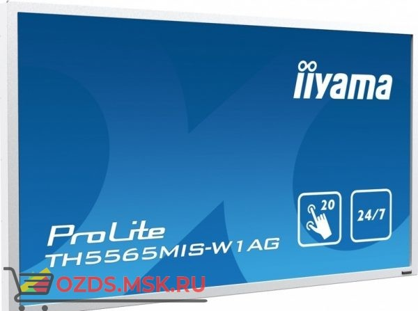 Iiyama TH5565MIS-W1AG: Интерактивная панель