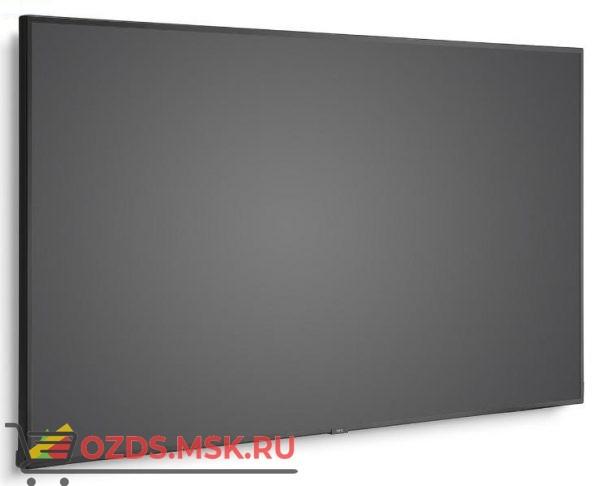 NEC P754Q: Профессиональная панель