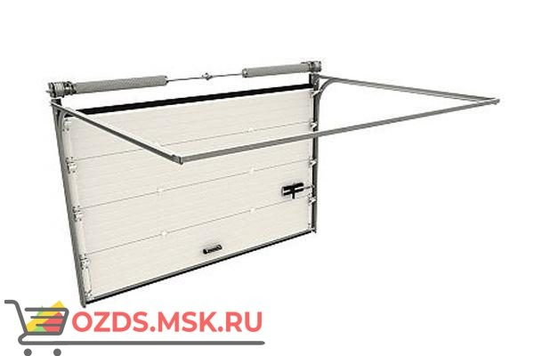 DoorHan RSD02 DUS-470: Ворота секционные