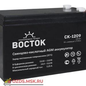 Восток СК-1209 Аккумулятор