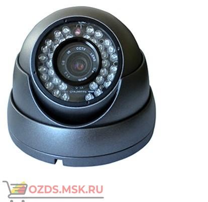 ZM-CAM-HLS01 Видеокамера внутренняя с возможностью циклической записи видео в VGA-качестве со звуком