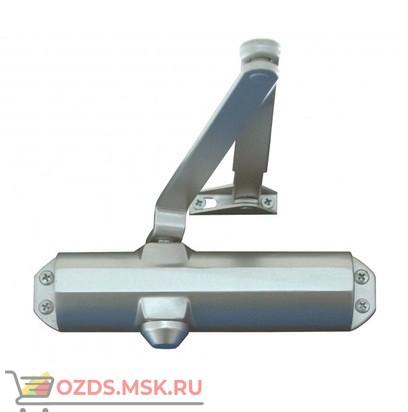 Falcon Eye FE-F6700 литой (серебро): Доводчик на дверь весом 20-80 кг