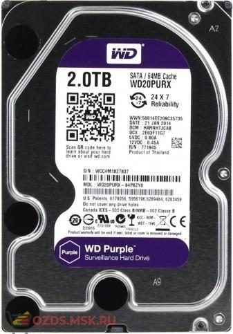 Western Digital WD20PURX (purple) 2 Tb 64 Mb SATA-III: Жесткий диск для видеорегистраторов