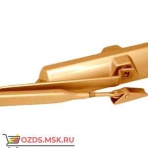 DORMA TS68 Доводчик дверной (золото)