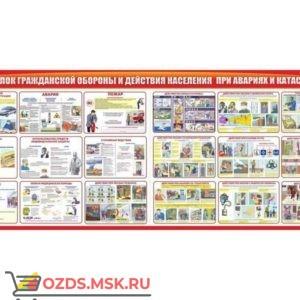 Организация подготовки и обучения по ГО и ЧС: Комплект из 7 плакатов
