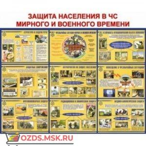 Защита населения в ЧС мирного и военного времени: Плакат по безопасности