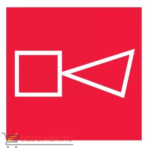 Знак F11 Звуковой оповещатель пожарной тревоги ГОСТ 12.4.026-2015 (Пластик 100 х 100)