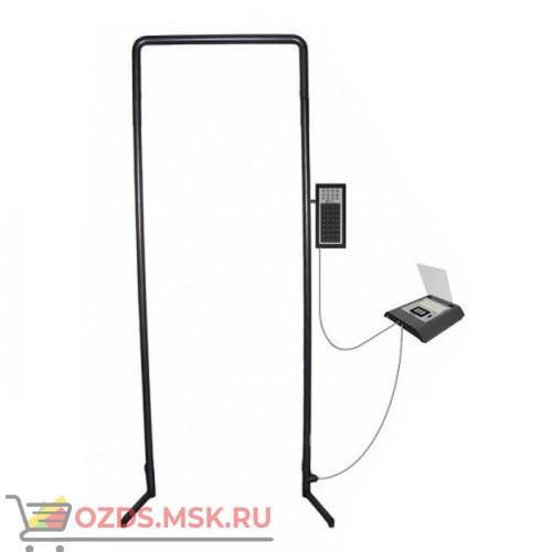 СКИЗЭЛ-0111 (840 мм): Арочный металлодетектор