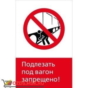 Знак 5.1.6.10 Подлезать под вагон запрещено! (Пластик 450 x 700)