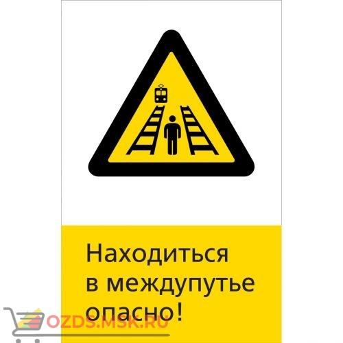 Знак 5.1.6.18 Находиться в междупутье опасно! (Пластик 450 x 700)