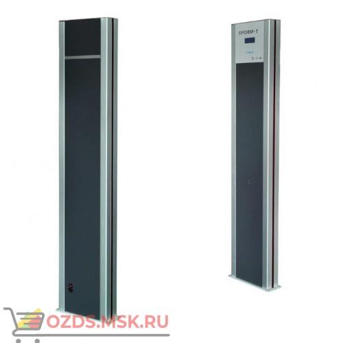 Профи МОНО Комплект 2 шт: Арочный металлодетектор