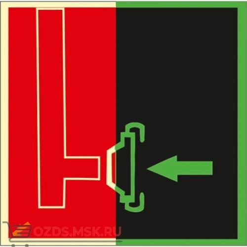 Знак F08 Пожарный сухотрубный стояк (Фотолюминесцентный Пленка 200 x 200) Т2