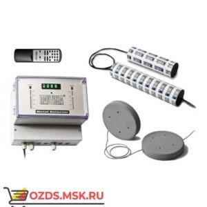 Арочный металлодетектор «Паутина-НС1»