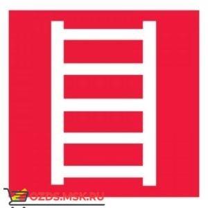 Знак F03 Пожарная лестница ГОСТ 12.4.026-2015 (Пластик 200 х 200)