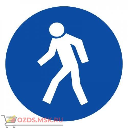 Знак M10 Проход здесь ГОСТ 12.4.026-2015 (Пластик 200 х 200)