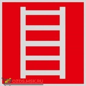 Знак F03 Пожарная лестница ГОСТ 12.4.026-2015 (Световозвращающий Пленка 200 x 200)