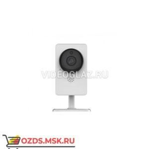 AltCam IBC26IR-WF Интернет IP-камера с облачным сервисом