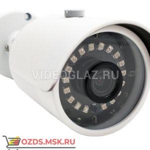 Space Technology ST-181 M IP HOME H.265(объектив 3,6mm): IP-камера уличная
