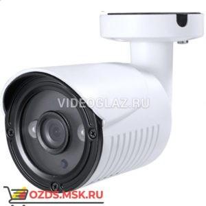 MicroDigital MDC-AH6290FTN-2S: Видеокамера AHDTVICVICVBS