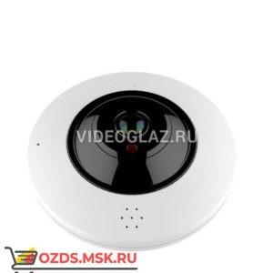 AltCam IDMF121IR-WF: Wi-Fi камера