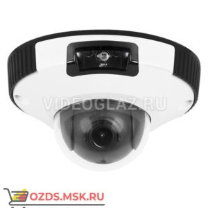 Evidence Apix — MiniDome E4 21(II): Купольная IP-камера
