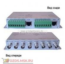 OSNOVO TP-C8: Передатчик видеосигнала по витой паре