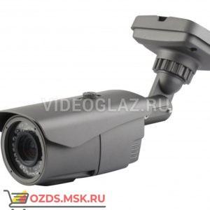 AltCam DCF21IR: Видеокамера AHDTVICVICVBS