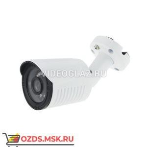 AltCam DCF51IR: Видеокамера AHDTVICVICVBS