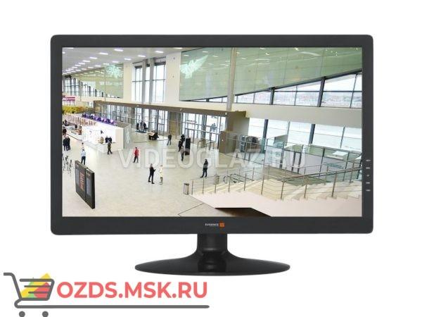 Evidence WideScreen-21(II) rev.2: Компьютерный монитор