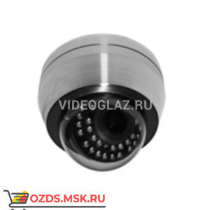 MicroDigital MDC-SSi8290FTN-24: Купольная IP-камера