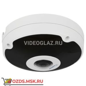 Geovision GV-FER12203 IP-камера FishEye