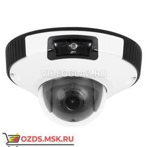 Evidence Apix — MiniDome E2 21(II): Купольная IP-камера