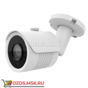 AltCam DCF81IR: Видеокамера AHDTVICVICVBS