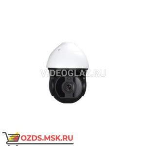 MicroDigital MDS-i3691-14H: Поворотная уличная IP-камера