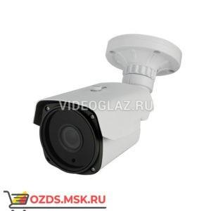 AltCam DCV21IR: Видеокамера AHDTVICVICVBS