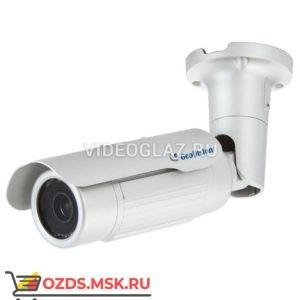 Geovision GV-BL1511: IP-камера уличная