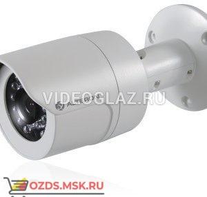 Alteron KIB82: IP-камера стандартного дизайна