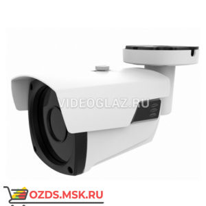 AltCam ICV52IR: IP-камера уличная
