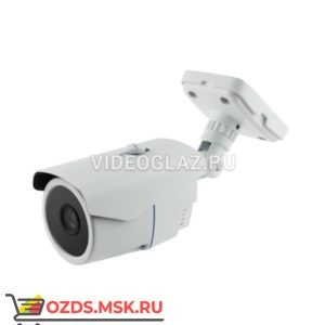 AltCam DCV21IR-2: Видеокамера AHDTVICVICVBS